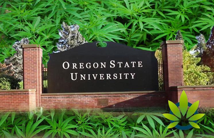 New Global Hemp Innovation Center by Oregon State University
