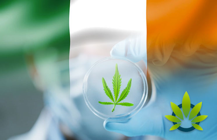 Ireland Legalizes Access to Medical Cannabis Treatments in Five-Year Trial Program