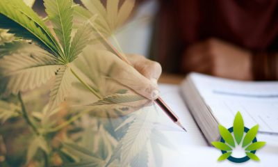 Marijuana Education Certificate NGO, Green Flower Media, Secures $20 Million in Funding