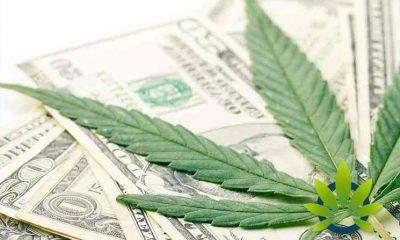 Marijuana Sales Revenue Surpasses $1 Billion in the State of Colorado Since 2014 Legalization