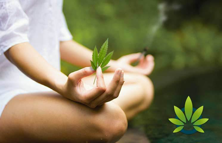 Meditation and Medical Marijuana: The Cannabis Effects for a Zen Mind