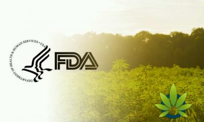 NPA Reports Amendments In House Agriculture Appropriation Bill:To Include Funds For FDA For Federal CBD Standards