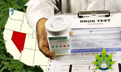 Nevada Begins a New Trend by Banning Most Pre-Employment Marijuana Tests