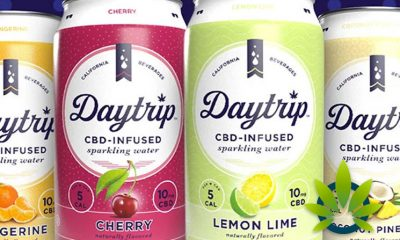 New Daytrip CBD-Infused Sparkling Water Drinks Launch with a Range of Flavors