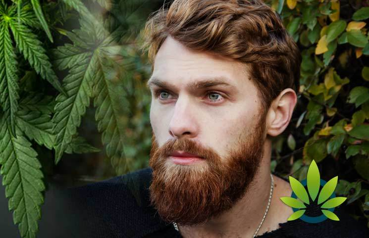 New Men's CBD Haircare Line by Barba Roja Will Feature Cannabidiol Ingredient