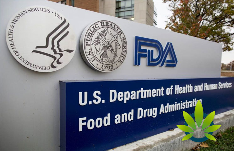 FDA CBD Hearing Key Talking Points: Main Cannabidiol Lessons Learned So Far