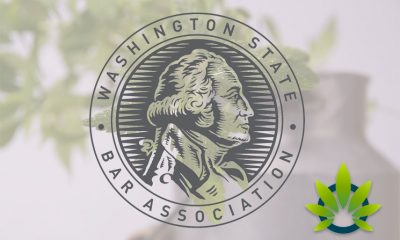Washington State Bar Association is Hosting a Hemp CBD Webinar on June 19