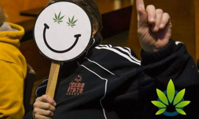 State of Michigan's Proposal 1 Set to Bring About Many Cannabis Legalization Benefits and Changes
