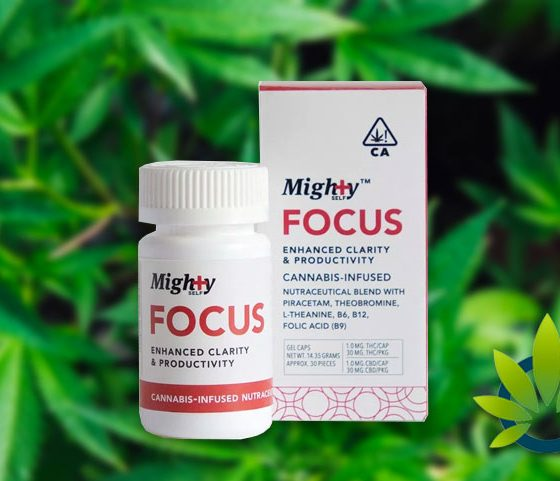 mighty focus