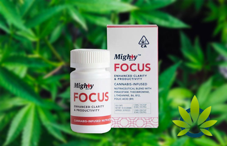 mighty focus