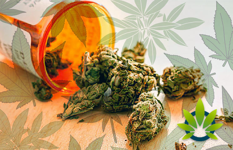 meidcal marijuana mississippi