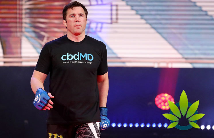 Bellator MMA Signs A Multi-Year Deal With CBD Cannabis Company cbdMD