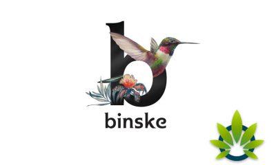 "Binske's Widespread Influence Secures ""World's Largest Marijuana Brand"" Title"