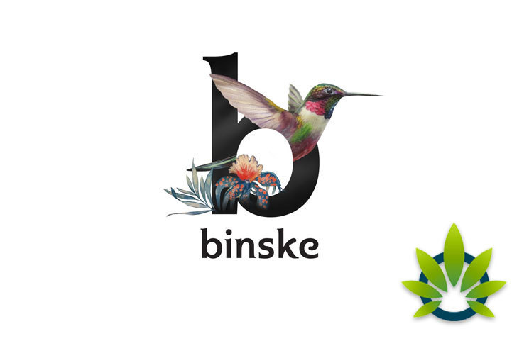 "Binske's Widespread Influence Secures ""World's Largest Marijuana Brand"" Title"