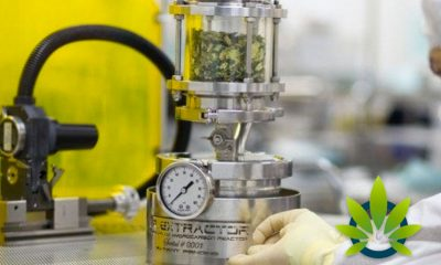 Top CBD Extraction Methods