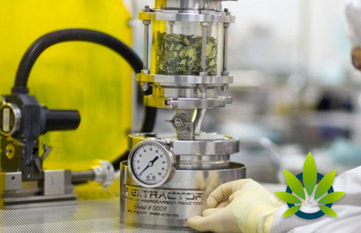 Top CBD Extraction Methods