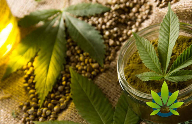 CBD Oil Sales and Manufacturing Along with Hemp Cultivation Have Been Legalized in Ohio