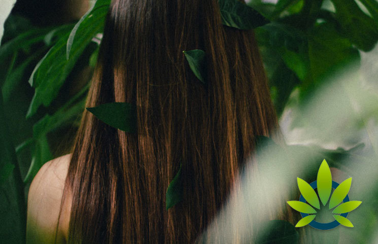 CBD for Scalp Health