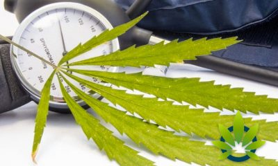Can CBD Lower Blood Pressure? Is Cannabidiol a Viable Option for Hypertension?