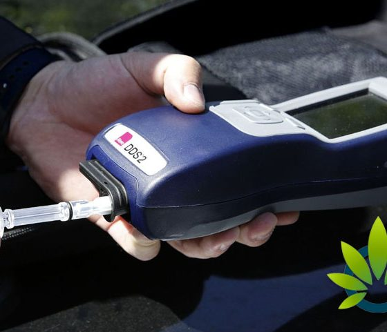 Canada Approves Device to Test Saliva of Drivers Suspected of Cannabis Use and Intoxication
