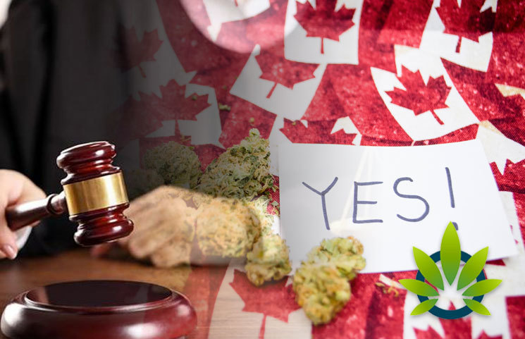 Canada is Applying the Marijuana Legalization Pressure on US Over Federal Cannabis Policies