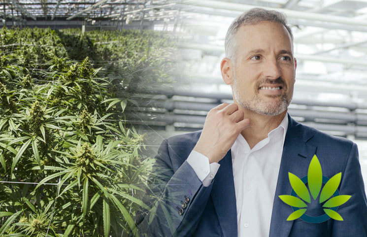 CannTrust Chairman and CEO Reportedly Informed of Unlicensed Cannabis Growing in November