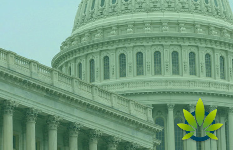 Cannabis Industry's 2019 Capitol Hill Lobbying Efforts on Pace to Surpass $3 Million This Year