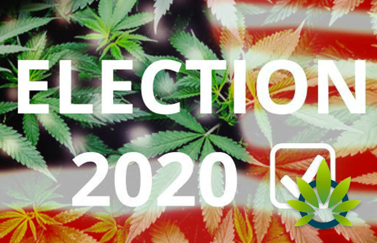 Cannabis Outlook is Beginning to Shape the 2020 Presidential Election Debate