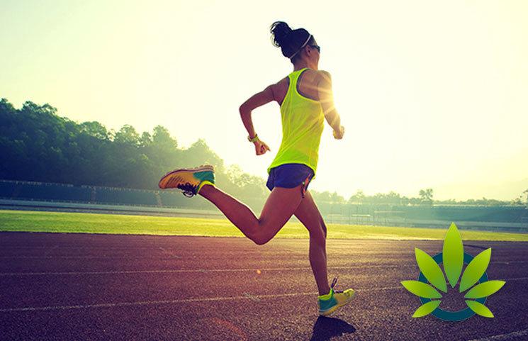 Cannabis and CBD Oil is Gaining Popularity Among Vegan Athletes