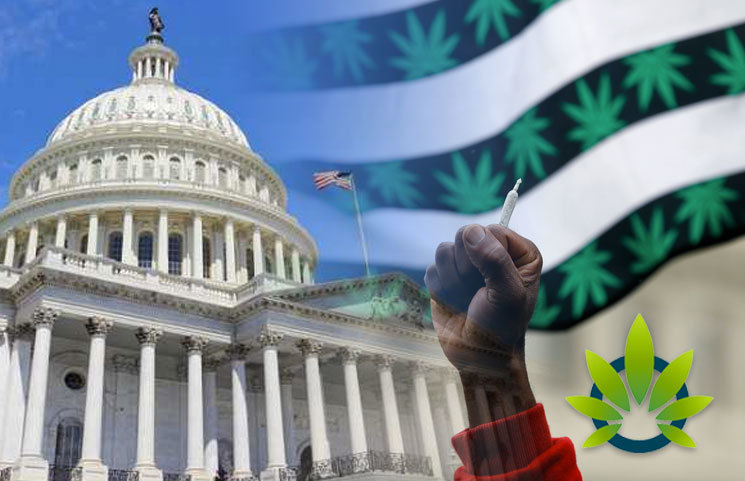 Congress is Hosting Historic Cannabis Legislation Hearing on Ending Federal Marijuana Prohibition