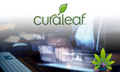 """Curaleaf Clears its Website of """"Unsubstantiated"""" Health Claims, as FDA Warns of """"Illegal Selling"""""""