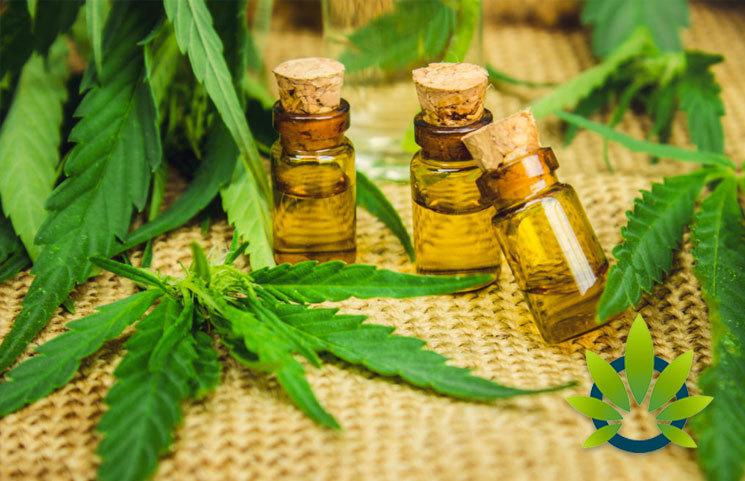 EUPHORIA CBD Full Spectrum Oil Recalled by Irish Government Over Illegal THC Levels