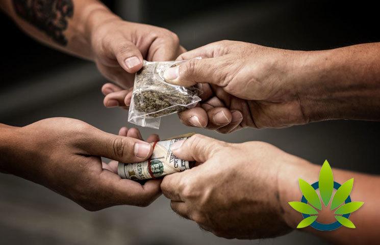 Legal Marijuana Impact On Black Market