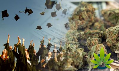 Financial Aid Students with Minor Marijuana Charges Saved by New Bill Giving Second Chances