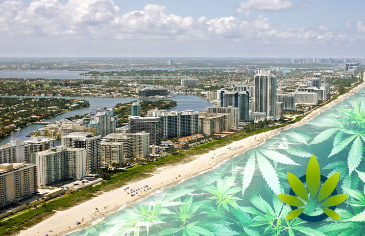 Florida Looks to Regulate CBD as Sunshine State Looks to Pass Cannabidiol Laws by September