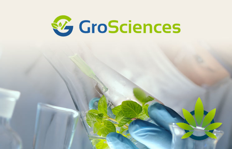 GroSciences May Roll Out Tru-Hemp ID DNA-Based Kit Project by Late 2019