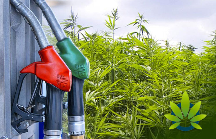 biofuel as a renewable source