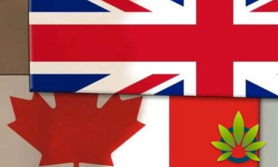 How Canada Might Have Helped the United Kingdom Be the Next Country to Legalize Marijuana
