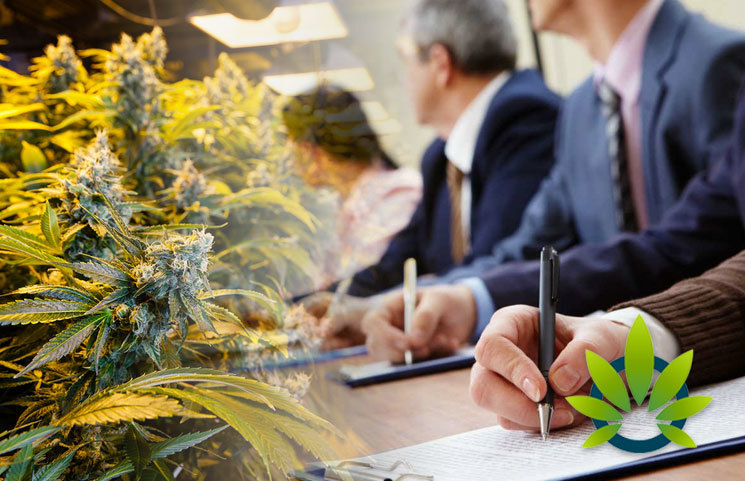 New Access + Innovation Project Group Formed by Industry Leaders to Help Set Cannabis Regulations