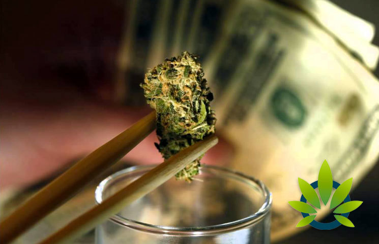 New Nielsen Report: Legal Cannabis Sales Will Soon Be Worth Billions of Dollars