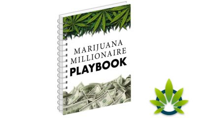 Marijuana Millionaire Playbook: Learn How to Invest in Cannabis Stocks