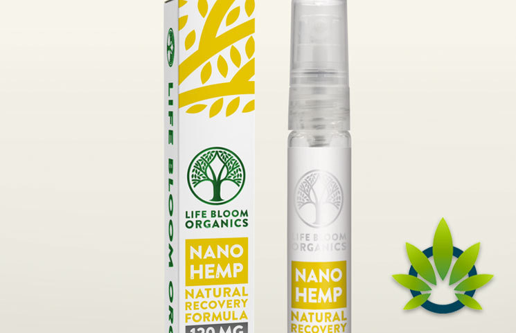 Life Bloom Organics Nano Hemp Muscle Recovery Formula for Pain Relief