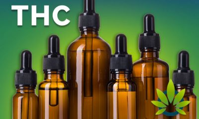A New Report Shows The Rise Of Cannabidiol (CBD) In Legal Markets