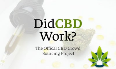 New Project DidCBDWork.com Helps Cannabidiol Users Track Whether or Not CBD Worked for Them