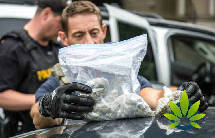 "Police May Be Able to Solve ""More Serious"" Crimes, As Marijuana Is Legalized"