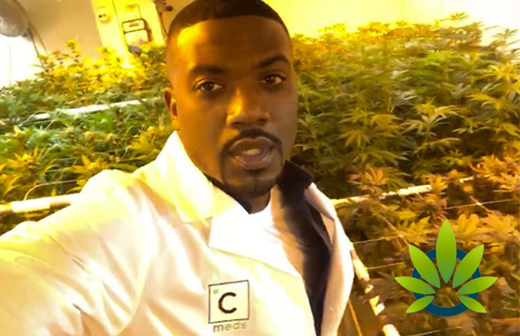 Celebrity Ray J Invests in Own Cannabis Company, William Ray LA, Promoting 'Ray Jay's Joints'