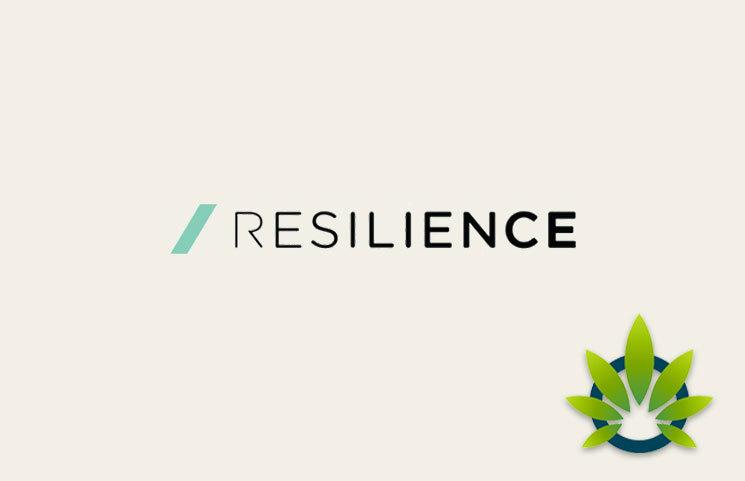 Resilience CBD