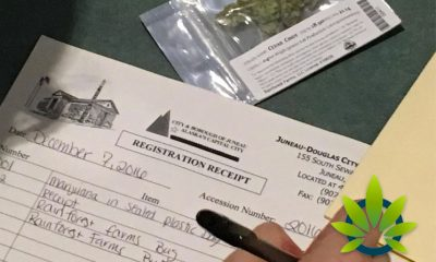 Social Use Cannabis Regulation Approval for Edibles Is Here for Alaska's Capital City, Juneau