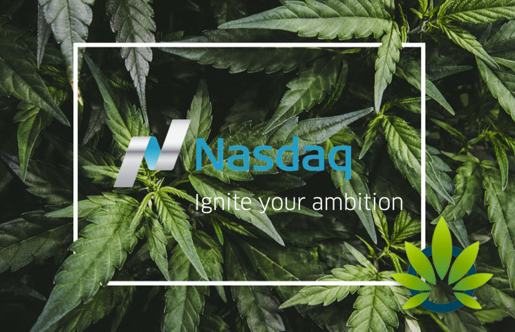 Sundial Growers Nasdaq IPO: Here's What to Know About the $130 Million Plan