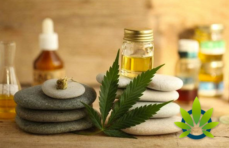 Top US Retailers are Making Space for the Wave of CBD Beauty Products Penetrating the Market